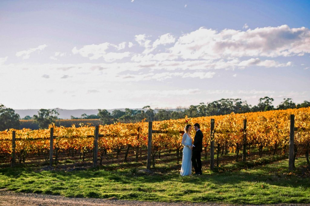 wedding-couple-at-vines-vineyard-yarra-valley